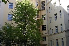 Byty Terronská